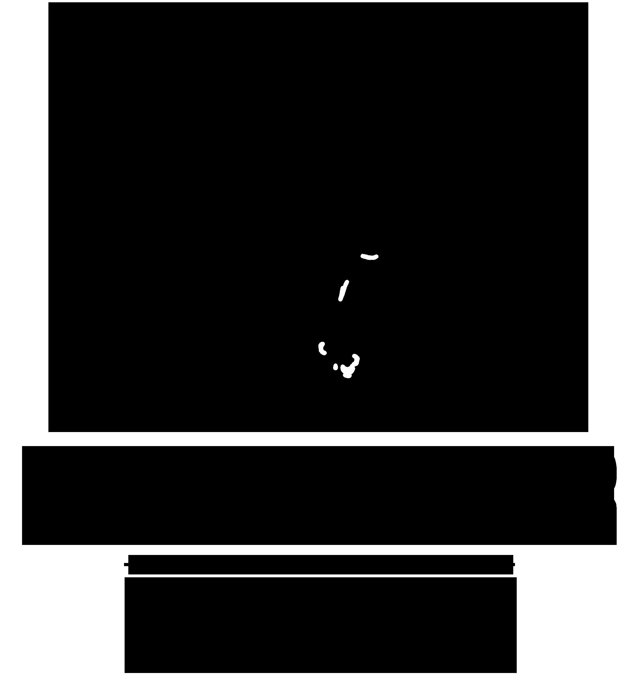 bierenmeer logo